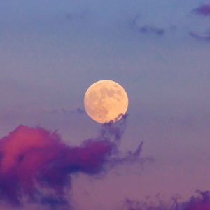 Full Moon Dance, Session 28, 1 October 2020 with Expressive Movement Founder, Sian Palmer