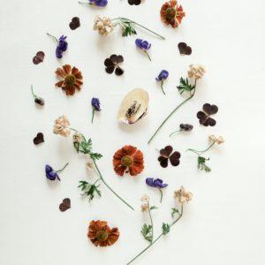 19 April, Wheel of Life Ancestral Ritual with Aleksandra